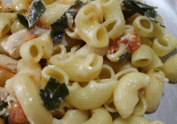 Macaroni Pasta - The Recipe of Macaroni Pasta in Awesome Blend in masalahealth.com