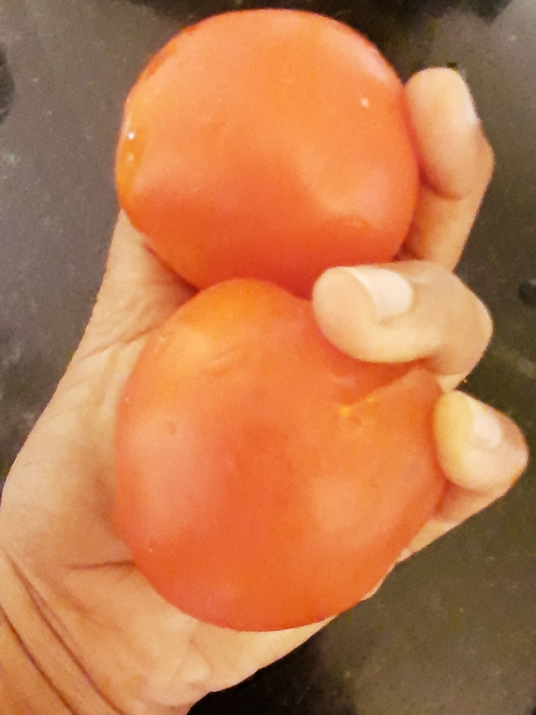 2 Medium Tomatoes