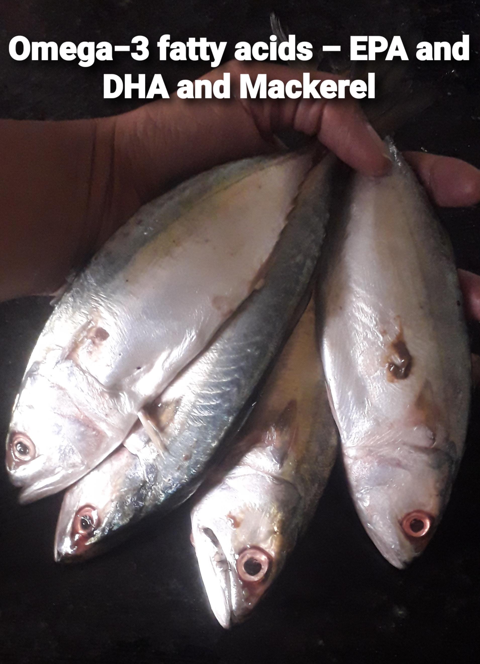 Omega−3 fatty acids – EPA and DHA and Mackerel